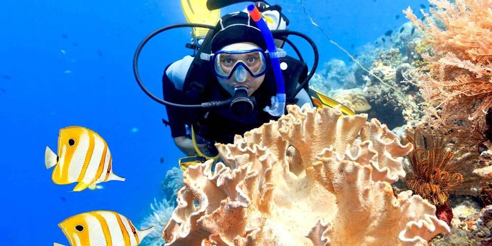 1 Scuba Diving from Safaga Port